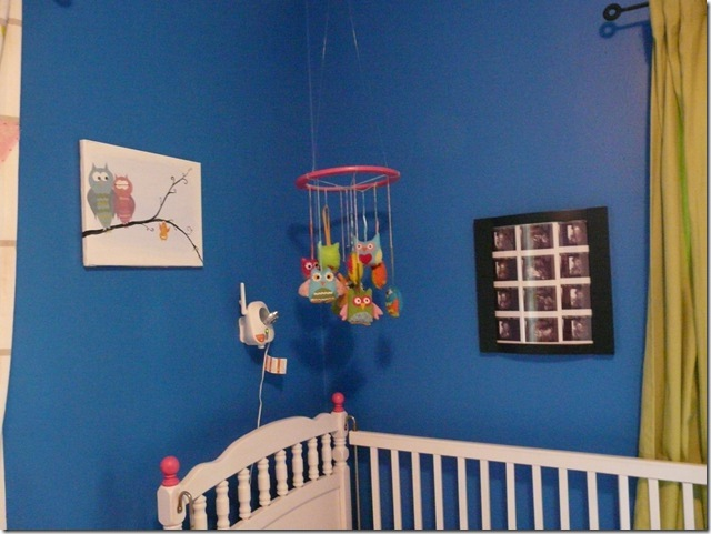finished nursery (9)