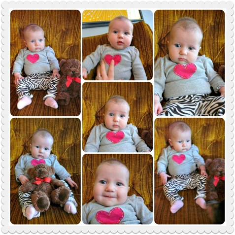 15 week Collage