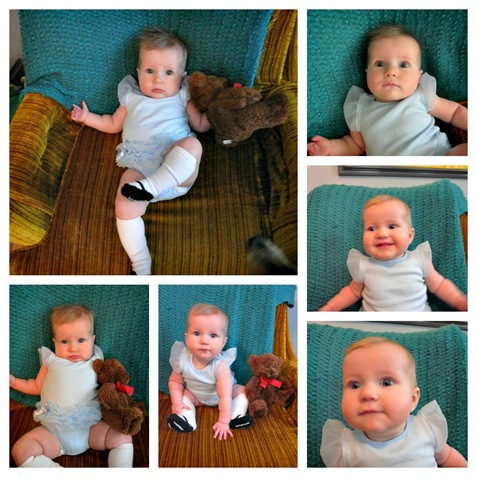 28 week Collage
