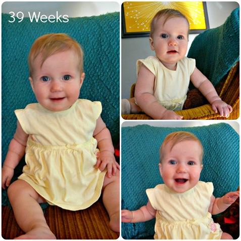 39 week Collage