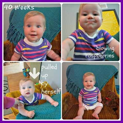 40 week Collage