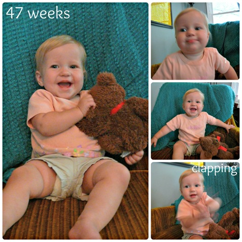 47 week Collage