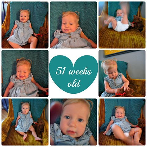 51 week Collage