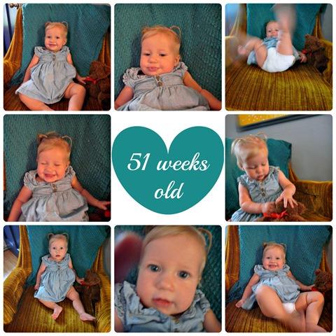 51 week Collage