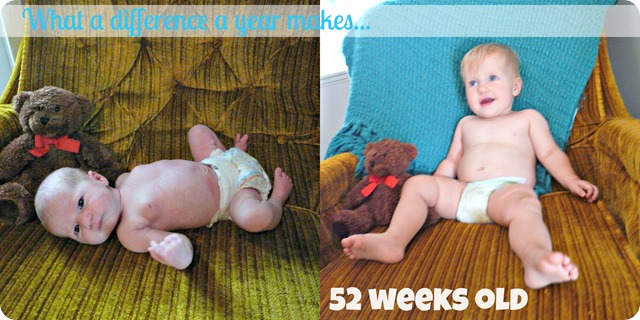 52 week Collage