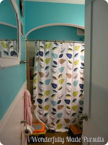 bathroom current (1)