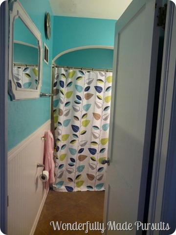 bathroom current (2)