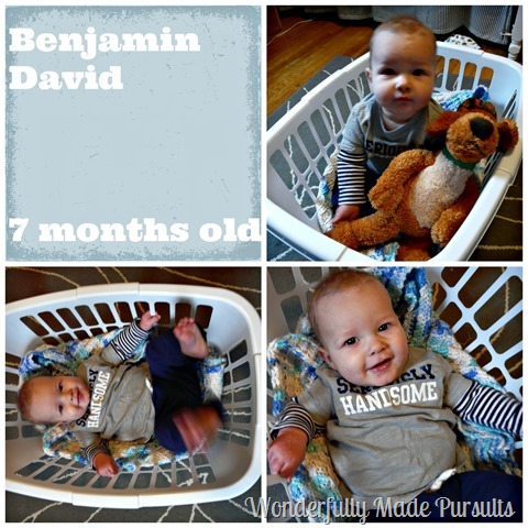 7 month Collage