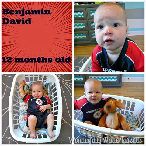 12 month Collage