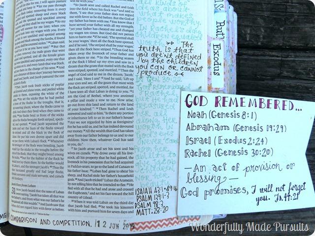liz journals the Bible (39)