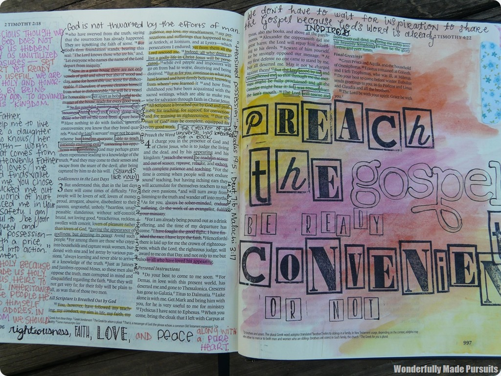 liz journals the Bible (18)